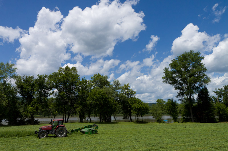 mowing the alfalfa-4387
