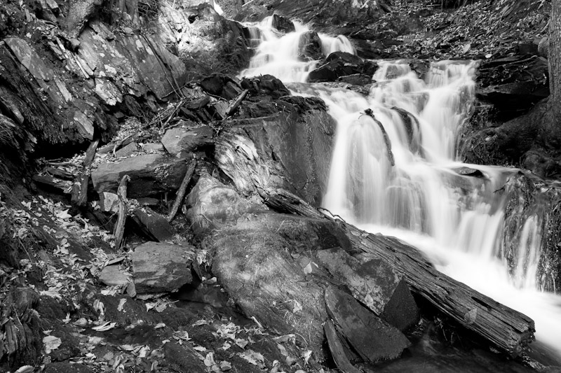 streambed2-0205