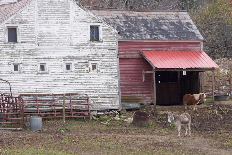 barnyard-1845