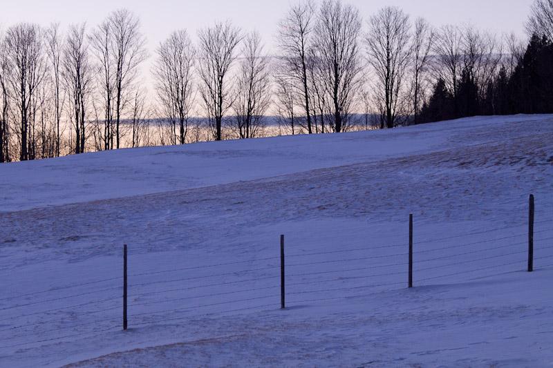 field at dusk-7290