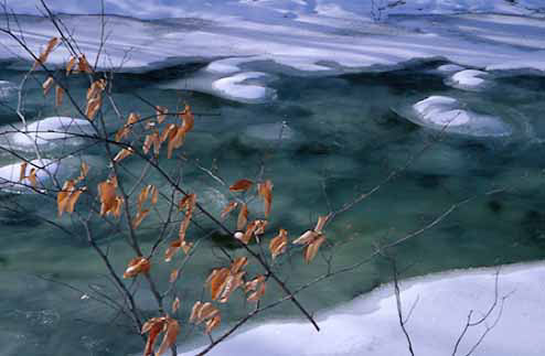 late winter stream-