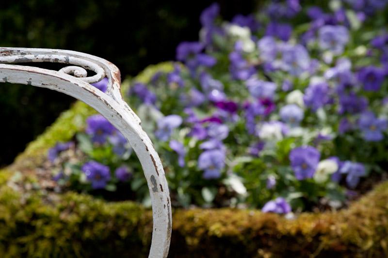 garden scene-0091