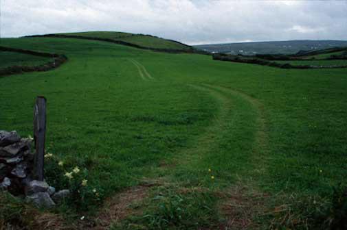 irish pasture-