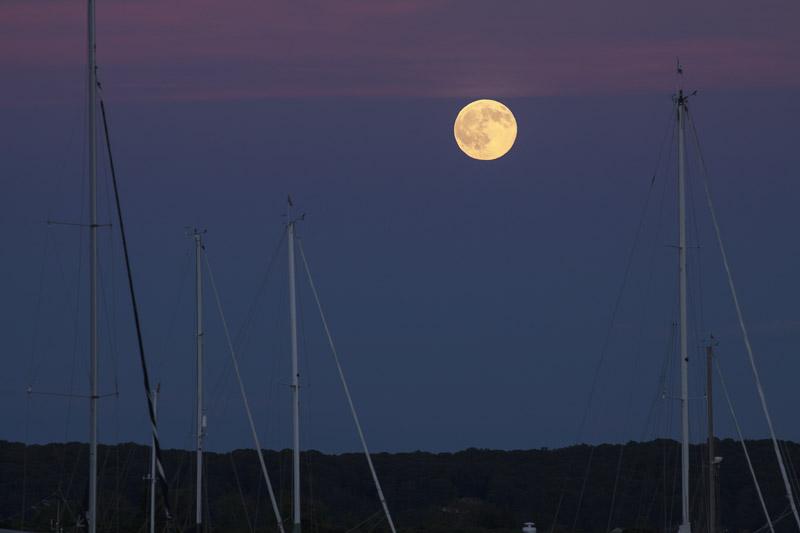 full buck moon-7282