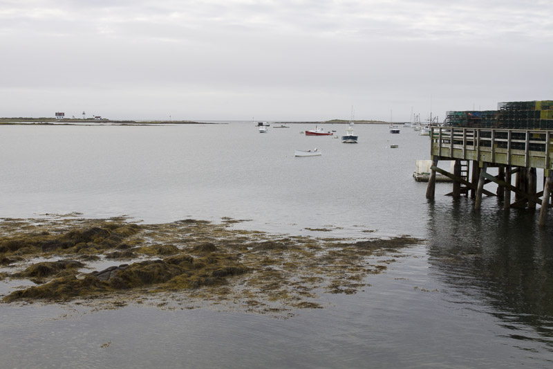 cape porpoise harbor-4877